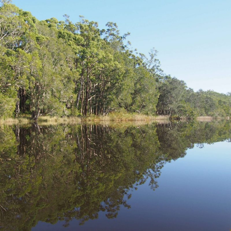 Myall Lakes: My Photo Story